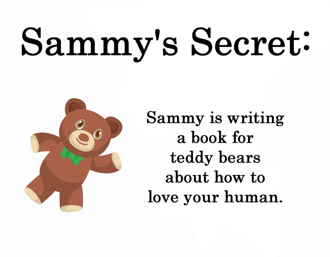 sammy writing